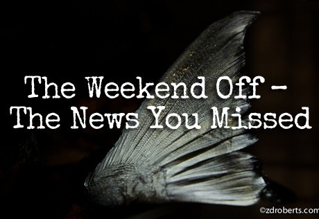 NewsWeekend7-20